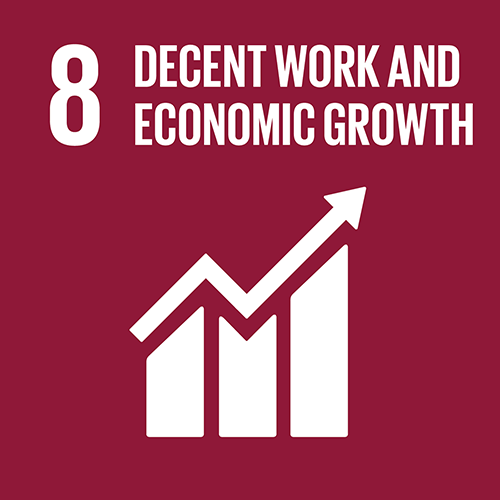 8. Promote inclusive and sustainable economic growth, employment and decent work for all